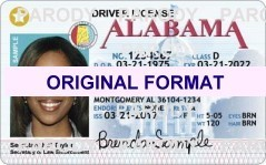 alabama Driver License Format ID Cards Designs Templates Novelty Software Card Hologram