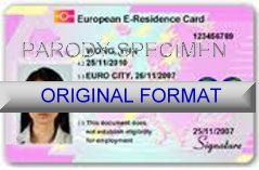 EUROPEAN DRIVER LICENSE ORIGINAL FORMAT, DESIGN SPECIFICATIONS, NOVELTY SECURITY CARD PROFILES, IDENTITY, NEW SOFTWARE ID SOFTWARE