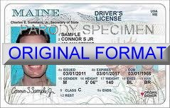 Maine Fake ID Template Large