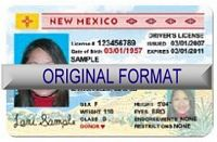 New Mexico Fake ID