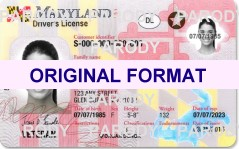 MARYLAND FAKE ID CARD, SCANNABLE FAKE IDS MARYLAND, BUY MARYLAND FAKEIDS AND FAKE IDENTIFICATION