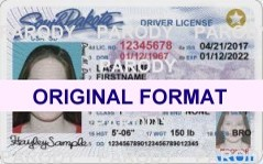buy south dakota fake id card online scannable