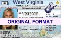 fake id west virgina scannable with holograms
